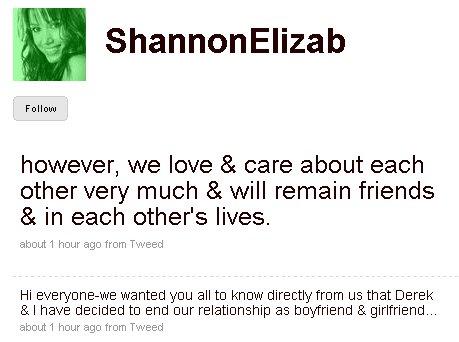 shannon-elizabeth-tweets-derek-hough